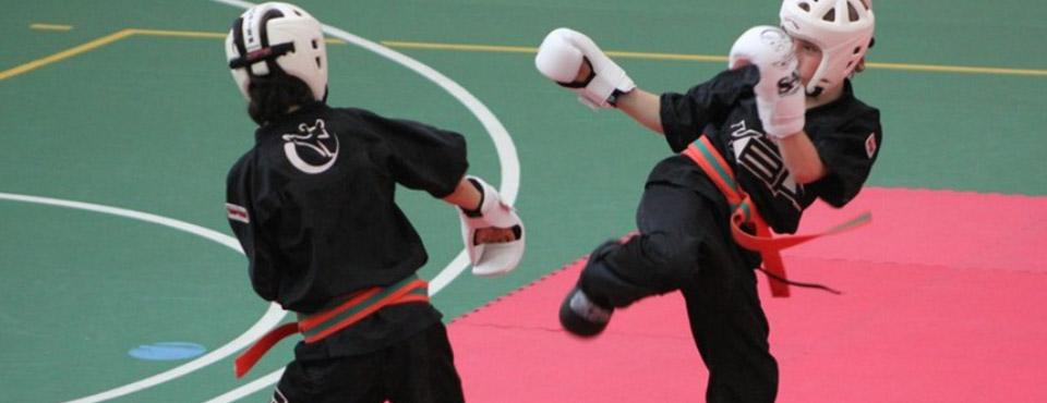 Karate Contact Junior